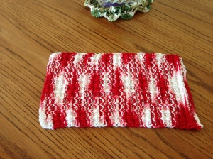 Double Bump Dishcloth